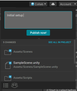 Unity Collab Initial Commit